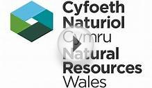 Natural Resources Wales / Information about Installations
